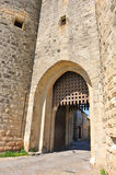 Fortification door of Aigues Mortes Stock Image