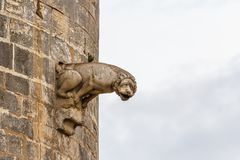 Fortifications of Aigues-Mortes town. France Stock Photos