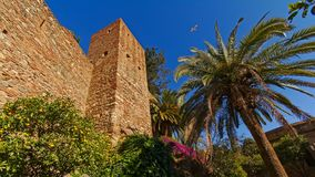Fortified walls and tower  in Alcazaba moorish castle in Malaga. Fortifications of Alcazaba moorish castle in Malaga, with plm tree and pink flowers on a sunny Royalty Free Stock Images