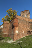 Fortifications Wawel Castle Royalty Free Stock Photos