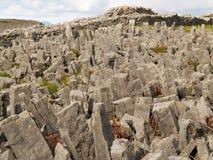 Fortificazione del Angus del Dun, Inishmore fotografia stock libera da diritti