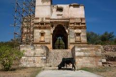 Fortificazione indiana e mucca nera Fotografie Stock Libere da Diritti