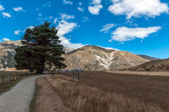 Fortifichi la collina in alpi del sud, Arthur& x27; la s passa, isola del sud della Nuova Zelanda Immagine Stock Libera da Diritti