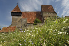 Fortified church of Copsa Mare. Among flowers Stock Photo