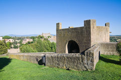 Fortified walls. Tuscania. Lazio. Italy. Royalty Free Stock Images