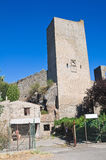 Fortified walls. Viterbo. Lazio. Italy. Stock Image