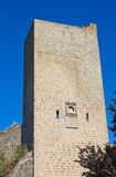 Fortified walls. Viterbo. Lazio. Italy. Royalty Free Stock Photo