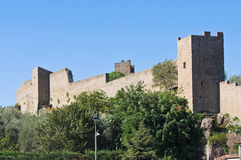 Fortified walls of Viterbo. Lazio. Italy. Royalty Free Stock Photo