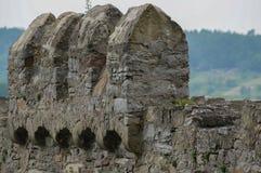 Fortifique ameias da parede da ruína Loeffelstelz, ou rrmenz de D em Muelacker, Alemanha no rio de Enz Fotografia de Stock