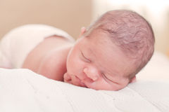 Fortnight newborn baby Stock Photos