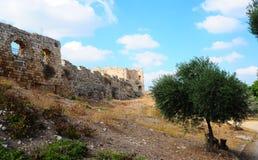 Fortress. View To Ruins Of The Crusader Fortress Antipatris Stock Photo