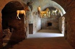 Fortress de Salses Pferde Lizenzfreie Stockbilder