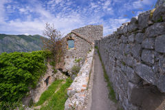 Fortress of Kotor. The city wall and fortress of Kotor, Montenegro Royalty Free Stock Images