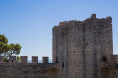 Fortress on the lake Royalty Free Stock Image