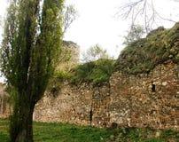 Fortress Smederevo Stock Photo