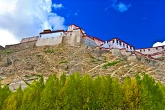 Fortress on Tibetan hillside. Low angle view of old fortress on Tibetan hillside Stock Photo