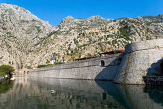Fortress wall of old city in Kotor Royalty Free Stock Photography