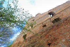 Fortress wall Royalty Free Stock Photos