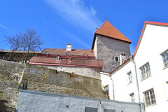 Fortress wall in Tallinn. Royalty Free Stock Photos