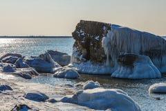 Forts brisés en hiver Images stock