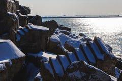 Forts brisés en hiver Image stock