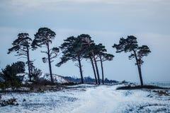Forts ruinés en hiver Images stock