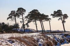 Forts ruinés en hiver Photos libres de droits
