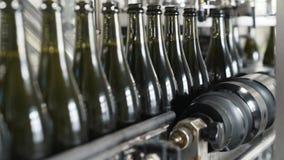 Fortskrider flaskor för grön färg för närbild transportörlinjen på en fabrik av champagne eller vin stock video