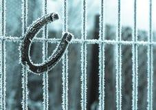 Fortuna di congelamento Fotografie Stock