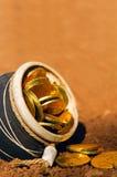 Fortuna irlandese - POT di oro Immagini Stock