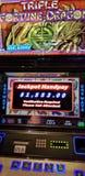 Fortuna tripla Dragon Slots Fotos de Stock Royalty Free