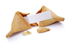 Fortune cookie. With blank paper on white background Stock Image