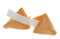 Fortune cookie Stock Photography