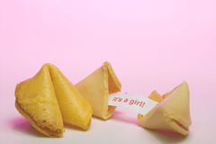 Fortune Cookie - Birth Announcement. A fortune cookie announcing the birth of a girl Stock Photography