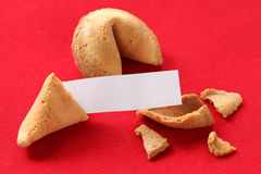Fortune cookie with blank message Royalty Free Stock Photo
