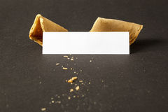 A fortune cookie with a blank paper for your message Royalty Free Stock Photo