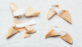 Fortune cookie. Four fortune cookies on table cloth Royalty Free Stock Photos