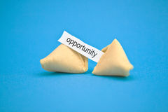 Fortune cookie message. Studio image of fortune cookie with \opportunity\ message Stock Photos