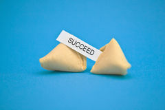 Fortune cookie message. Studio image of fortune cookie with \Succeed\ message Stock Image