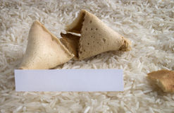 Fortune cookie on a rice bed Royalty Free Stock Photos