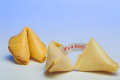 Fortune Cookie - It's a Boy. A fortune cookie announcing the birth of a baby boy Stock Images