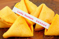 Fortune cookie with unlucky numbers Royalty Free Stock Photos