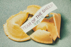 Fortune Cookie Year of the Sheep. A cracked open fortune cookie from a Chinese restaurant with the phrase, Year of the Sheep printed on the paper fortune in Royalty Free Stock Photo