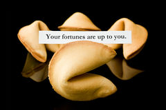 Fortune cookie: Your fortunes are up to you. Royalty Free Stock Photo