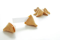 Fortune cookies. Asian fortune cookies with blank paper on white background Stock Photography