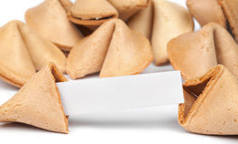 Fortune Cookies. A fortune cookie with fortune paper in front of a pile of other cookies isolated on white Stock Photography
