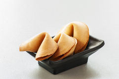 Fortune Cookies. Stock Image