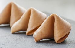 Fortune Cookies. Stock Photography