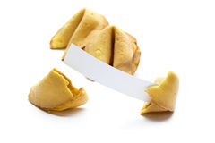 Fortune cookies isolated Stock Photos