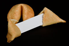 Fortune cookies plain. Chinese fortune cookies on black background with blank paper strip for your own good luck prophecy Stock Photography